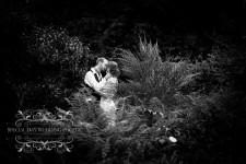 North Devon wedding photographer, photography north devon