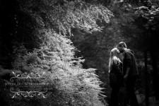 Killerton House wedding photography devon